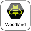 Buzz for Woodland