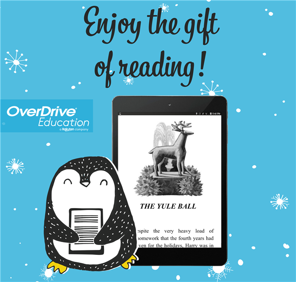 Enjoy the gift of reading this holiday break!